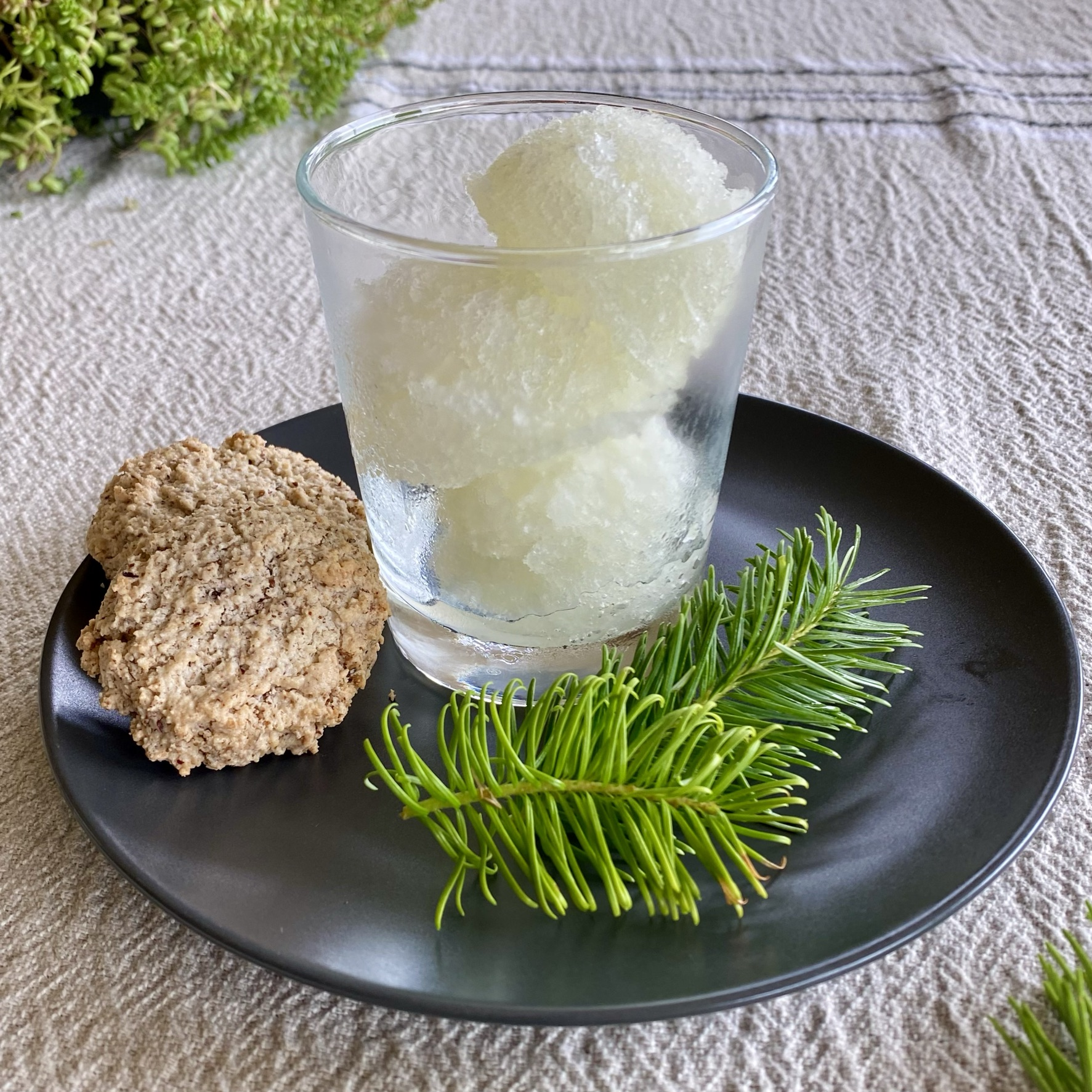 Fir tip sorbet in a glass