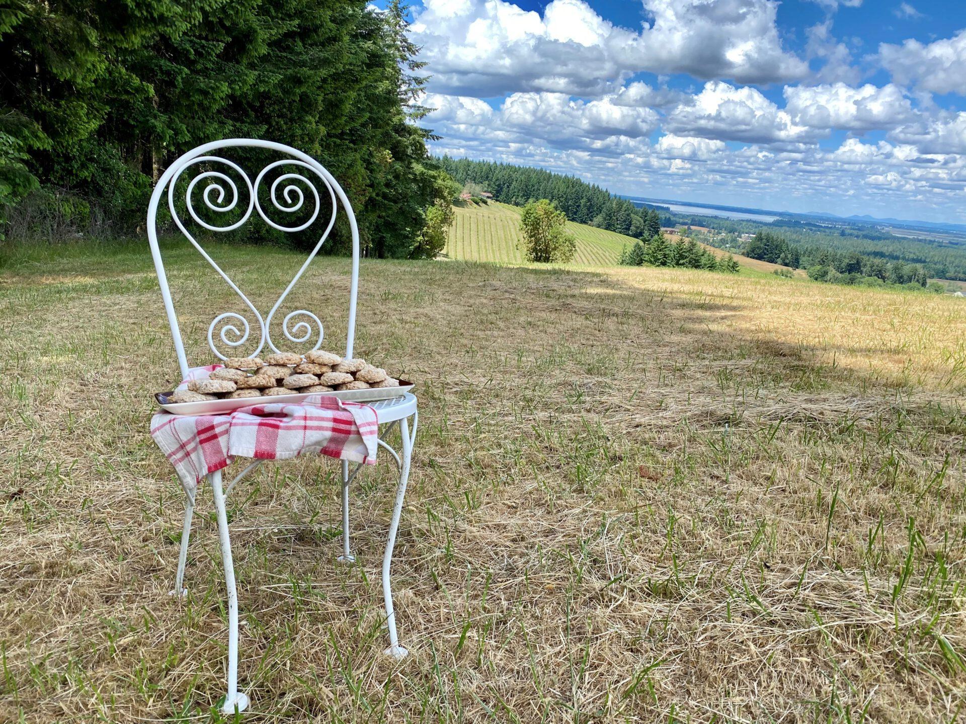hazelnut cookies sitting on chair in Oregon field